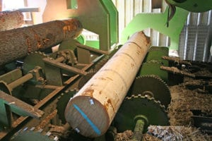 Read more about the article Increase the Efficiency of Your Debarker