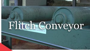 veneer flitch conveyor from veneer services