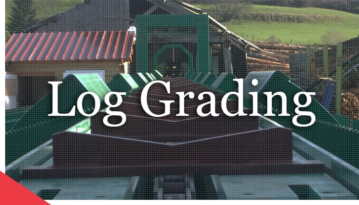 Grading on a Curve: Automated Log Grading