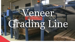 Veneer grading line with storage bins from Veneer Services. Veneer technologies. Veneer tech.