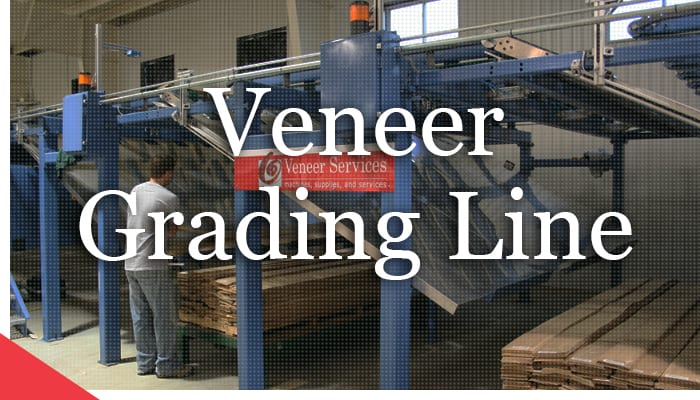Veneer grading line with storage bins from Veneer Services. Automated veneer technologies and industrial automation.